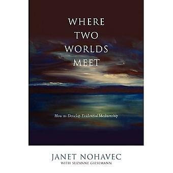 Où deux mondes se rencontrent