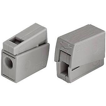 WAGO 51196504 EUCHTENKLEMME Terminale lampada flessibile: 0,5-2,5 mm² rigido: 0,5-2,5 mm² Numero di perni: 2 15 pc grigi