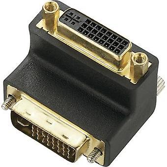 Renkforce DVI Adapter [1x DVI plug 29-pin - 1x DVI socket 29-pin] Black 0.00 m