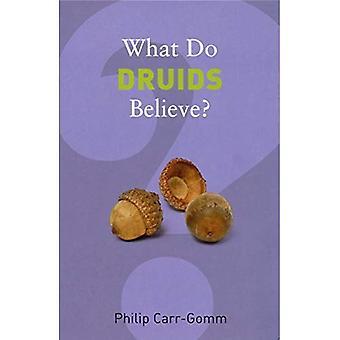 Che cosa credono i druidi? (Che cosa crediamo?)