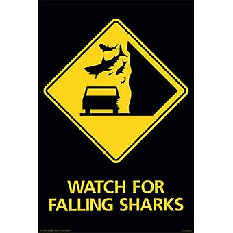 Poster - Sharks Falling - Sharks Wall Art Licensed Gifts Toys 241267