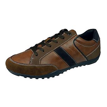 Geox U Garlan A Mens Leather Trainers / Shoes - Brown