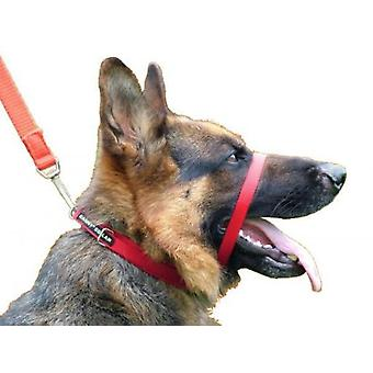 Canny Dog Canny Collar in Red (Dogs , Training Aids , Leashes, Harnesses & Headcollars)