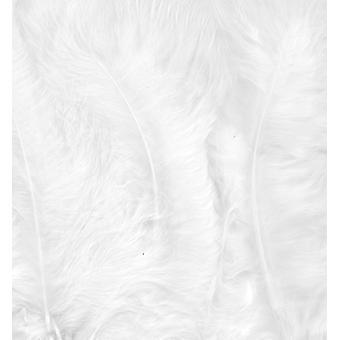 מרבו נוצות, לבן, 15pcs