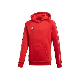 Adidas JR Core 18 CV3431 evrensel tüm yıl erkek sweatshirt
