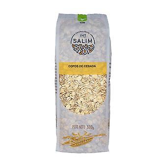 Barley Flakes 500 g
