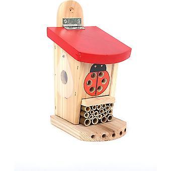 Wokex Live Ladybird Lebende Marienkferhtte, rot/braun