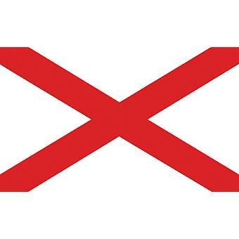 5ft x 3ft Flag - Ireland - St Patrick Cross
