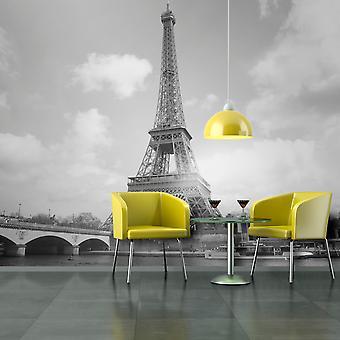 Papier peint - Seine et Tour Eiffel