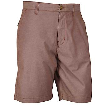 Quiksilver Mens daglige Oxford Shorts - Mohagany rød