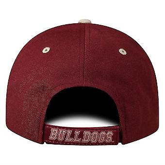 Mississippi State Bulldogs NCAA TOW Triple Threat Adjustable Hut