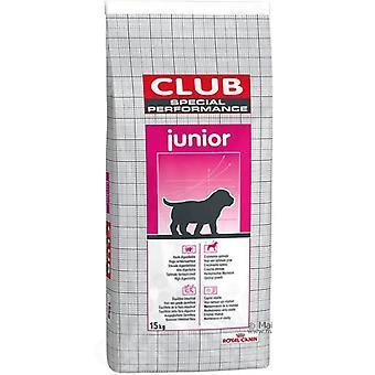 Royal Canin Pienso Club Special Performance Junior (Perros , Comida , Pienso)