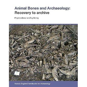 Animal Bones and Archaeology - Recovery to archive by Polydora Baker -