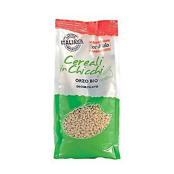 Hulled barley 500 g