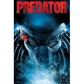 Poster - Studio B - Predator - Stare 23