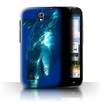 STUFF4 Fall/Abdeckung für Huawei Ascend G610/Great White Shark/Marine Wildlife
