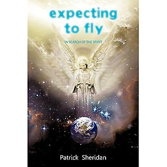 Expecting to Fly: In Search of the Spirit