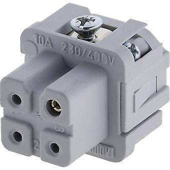 Amphénol C146 10B003 002 4-1 Socket Insert Amphénol C146 10B003 002 4 C146 10B003 002 4 Connecteurs lourdsIndustrial connectsRectangle plugs Charge