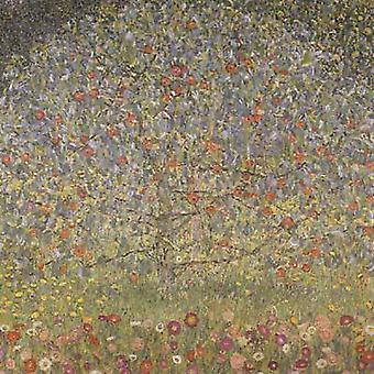 Apple Tree I,Gustav Klimt,50x50cm