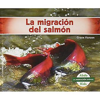 La Migraci�n del Salm�n (Salmon Migration) (La Migraci�n Animal (Animal Migration))
