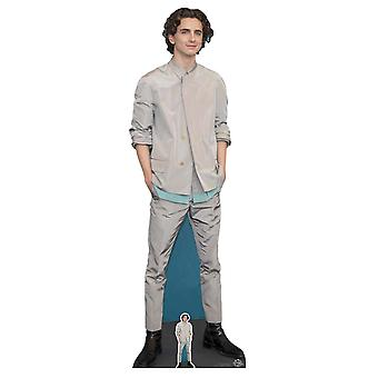 Timothee Chalamet Grey Outfit Lifesize Cardboard Cutout / Standee