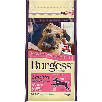 Chien adulte sensible Burgess - Saumon - 2kg