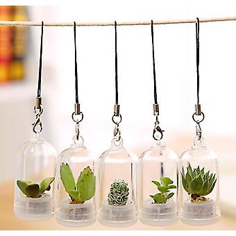 Pastoral Style Fake Green Plant Glass - Creative Mini Simulation Succulent