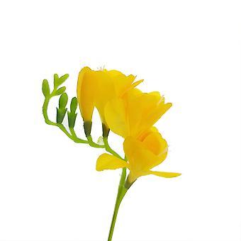 40cm amarillo artificial faux freesia tallo para floristería artesanía
