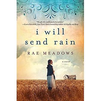 Jeg vil sende regn: en roman