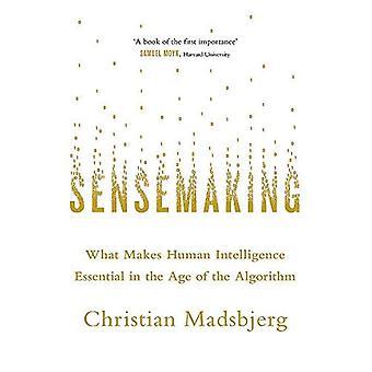 Sensemaking: wat maakt menselijke intelligentie essentieel in de leeftijd van het algoritme