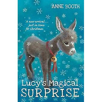 Lucys Magical Surprise by Anne Booth