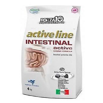 Forza10 Intestinal Active (Dogs , Dog Food , Dry Food , Veterinary diet)