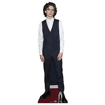 Timothee Chalamet Waistcoat Style Lifesize Cardboard Cutout / Standee