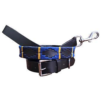 Carlos diaz genuine leather  polo dog collar and lead set cdhkplc6