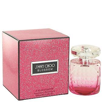 Jimmy choo kukka eau de parfum spray Jimmy Choo 518346 100 ml