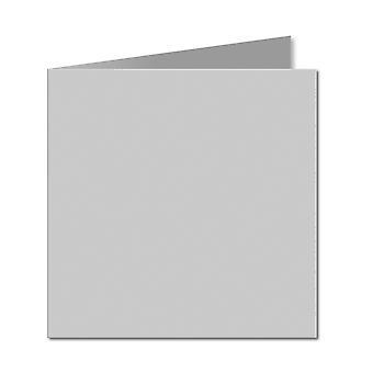Grigio argento. 123mm x 246mm. Piccolo quadrato. 235gsm Carta piegata vuota.