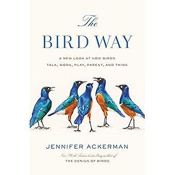 Lintu tapa: uusi tarkastella, miten linnut puhua, työskennellä, pelata, vanhempi, ja ajatella