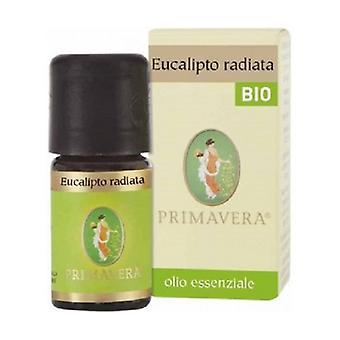 Eucalyptus Radiata Bio Essential Oil 5 ml of essential oil