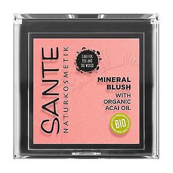 Mineral blush 01 Mellow Peach 1,8 g