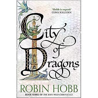Stadt der Drachen (der Regen Wild Chronicles, Buch 3)