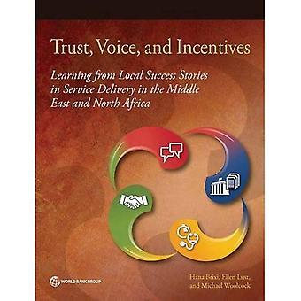 Vertrouwen, stem en prikkels: leren van lokale succesverhalen in dienstverlening in het Midden-Oosten en het noorden...
