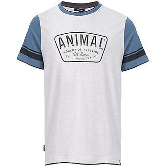 Animal hoops Lyhythihainen T-paita Vaalea harmaameleerattu