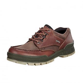 ECCO Track 25 - 831714 - Men's Gore-tex Walking Shoes In Bison