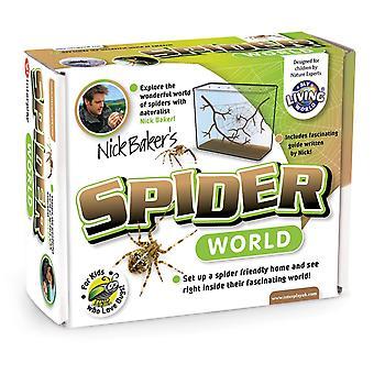 بلدي العالم العنكبوت العالمية الحية