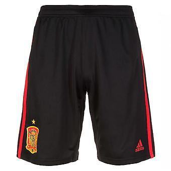2018-2019 Испания подготовки Adidas шорты (черный)