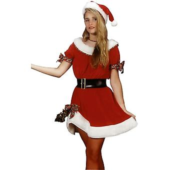 Miss Santa Claus Adult Costume