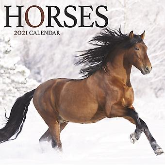 Horses Mini Square Wall Calendar 2021