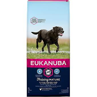 Eukanuba Mature Dog Food For Large Dogs Rich in Fresh Chicken For Dog 12kg
