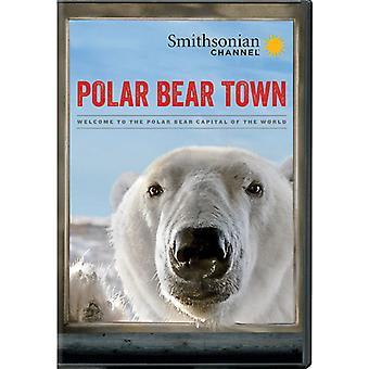 Polar Bear Town: Sesong 1 [DVD] USA import