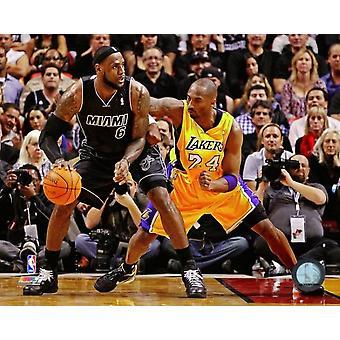 LeBron James & Kobe Bryant 2011-12 Action Photo Print (8 x 10)